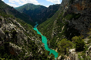 Europe's largest canyon Gorges du Verdon, 700m deep in places with the emerald green River Verdon, and limestone cliffs, Parc Naturel Regional du Verdon, Provence, France.  -  Robert Pickett