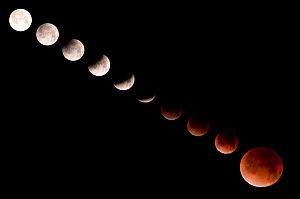 Lunar eclipse series, December 10 2011, Denali National Park, Alaska, USA.  -  Visuals Unlimited