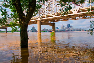 Ohio River  above flood stage, with bridge at Louisville, Kentucky, USA  -  Visuals Unlimited