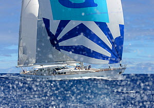 'Timoneer' competing in Antigua Superyacht Challenge 2013. All non-editorial uses must be cleared individually.  -  Rick  Tomlinson