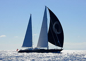 'Panthalassa' competing in Antigua Superyacht Challenge 2013. All non-editorial uses must be cleared individually.  -  Rick  Tomlinson