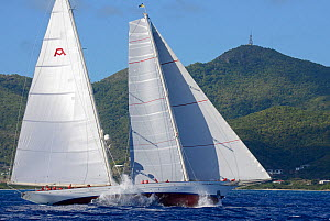 Antigua Superyacht Challenge 2013, 'Adela', the overall winner. All non-editorial uses must be cleared individually.  -  Rick  Tomlinson