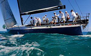 Day 1 of the Gaastra TP52 World Championships, Miami. March 5th 2013. TP52 'Azzurra', 2 races sailed. All non-editorial uses must be cleared individually.  -  Rick  Tomlinson