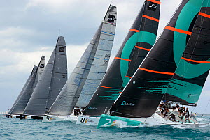 Day 2 of the Gaastra TP52 World Championships, 2 races sailed. TP52 'Quantum', 'Gaastra', 'Ran', 'Interlodge' and 'Azzura'. Miami, March 6th 2013. All non-editorial uses must be cleared individually.  -  Rick  Tomlinson