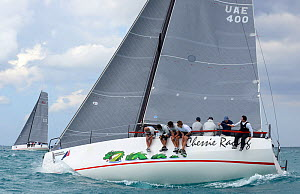 Day 2 of the Gaastra TP52 World Championships, 'Farr400' Chessie Racing, 2 races sailed. Miami, March 6th 2013. All non-editorial uses must be cleared individually.  -  Rick  Tomlinson