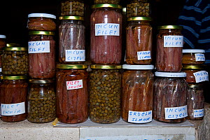 Jars of Anchovies, sardines and capers for sale in the Market of Vis Island, Croatia, Adriatic Sea, Mediterranean - Franco  Banfi