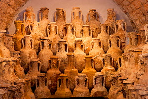 Ancient amphoras in museum, Village of Vis, Vis Island, Croatia, Adriatic Sea, Mediterranean  -  Franco  Banfi