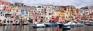 View of Procida, the small harbour of Corricella, island near Ischia Island, Italy, Tyrrhenian Sea, Mediterranean - Franco  Banfi