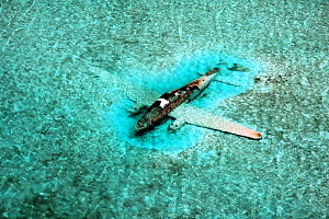 DC-3 Aircraft wreck. Drug running aircraft that crashed in shallow water. Normans Cay, Exhumas, Bahamas. May 2005  -  Michael Pitts,Michael Pitts