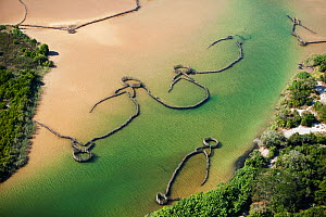 Aerial photograph of Kosi Bay, KwaZulu-Natal Province, South Africa, Traditional Fish Traps, June 2010 - Richard Du Toit
