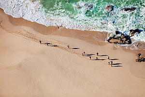 Aerial photograph of hikers on the whale trail, de Hoop Nature Reserve, Indian Ocean, South Africa, Western Cape Province, August 2010 - Richard Du Toit