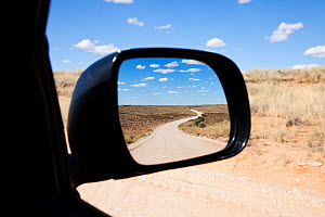 Wing mirror view of road through Kgalagadi Transfrontier Park, Northern Cape Province, Road, South Africa, February 2013 (This image may be licensed either as rights managed or royalty free.) - Richard Du Toit