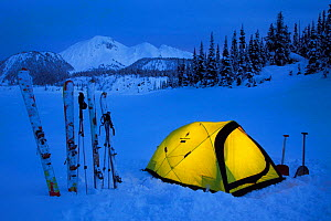 Yellow tent illuminated in the waning twilight hours on the shores of frozen Garibaldi Lake with a view of Mount Price in the background. Garibaldi Provincial Park. Britisth Columbia, Canada, March 20... - Floris van Breugel