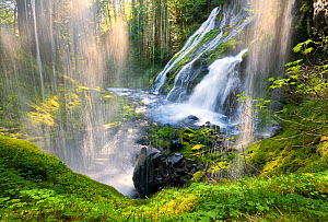A beautiful waterfall sparkles in the warm sunlight on the first warm day of spring in Gifford Pinchot National Forest. Washington, May - Floris van Breugel