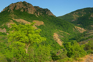 The hills of the Madzharovo canyon, Eastern Rhodope Mountains, Bulgaria, May 2013.  -  Wild  Wonders of Europe / Widstr
