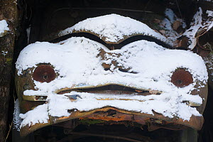 Old car covered in snow in 'Car graveyard' Bastnas, Sweden, December - Pal  Hermansen