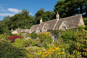 Pretty country cottages and gardens in the picturesque Cotswolds village of Bibury, Gloucestershire, England. Summer (September) 2012.  -  Adam  Burton