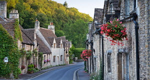 Pretty cottages in the picturesque Cotswolds village of Castle Combe, Wiltshire, England. September 2012.  -  Adam  Burton
