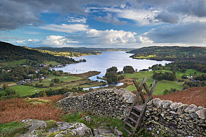 Footpath stile over dry stone wall, overlooking Lake Windermere, Lake District, Cumbria, England. Autumn (October) 2012 - Adam  Burton