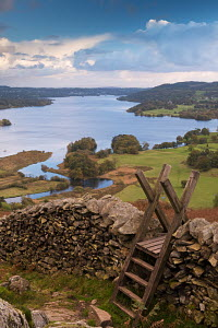 Drystone wall and stile above Windermere in the Lake District National Park, Cumbria, England. October 2012.  -  Adam  Burton