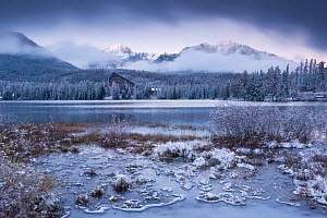 Winter snow and ice at Strbske Pleso in the High Tatras, Slovakia, Europe. Winter 2012. - Adam  Burton