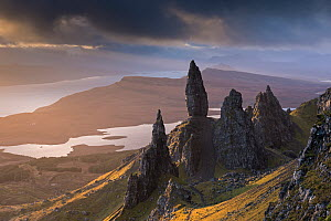 Old Man of Storr basalt pinnacles on the Isle of Skye, Scotland. November 2012.  -  Adam  Burton