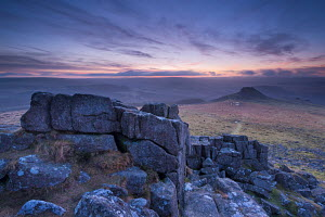 View towards Leather Tor from Sharpitor at dawn, Dartmoor National Park, Devon, England. February 2013.  -  Adam  Burton