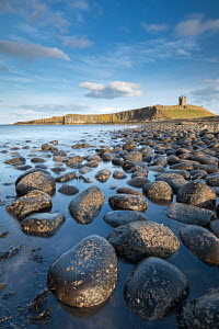 Afternoon sunshine on Dunstanburgh Castle, viewed from the boulder strewn shores of Embleton Bay, Northumberland, England. April 2013.  -  Adam  Burton