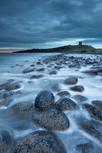 Dunstanburgh Castle at dawn from Embleton Bay, Northumberland, England. April 2013.  -  Adam  Burton
