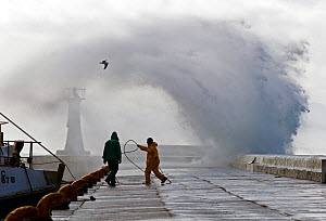 Storm sending spray over pier, Kalk Bay harbor, False Bay, Cape Town, South Africa. - Chris & Monique Fallows