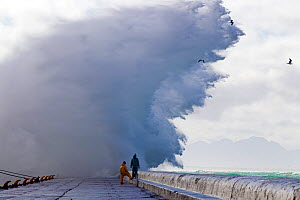 Storm waves sending spray over pier, Kalk Bay harbor, False Bay, Cape Town, South Africa. - Chris & Monique Fallows