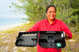 Anna Baouma from ASPO trapping Polynesian rat (Rattus exulans) around wharf as part of invasive species management, Lekiny, Ouvea, Loyalty Islands Province, New Caledonia, August 2012. - Roland  Seitre