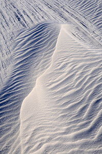 Irregular ripples on gypsum sand dunes created by high winds, White Sands National Park, Chihuahuan Desert, New Mexico, USA, December 2012. - Jouan Rius
