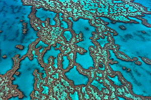 Aerial view of Hardy Reef, Great Barrier Reef, Queensland, Australia, December 2010. - Ingo Arndt
