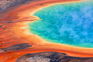 Grand Prismatic Spring, Midway Geyser Basin, Yellowstone National Park, Wyoming, USA, September 2011. - Ingo Arndt