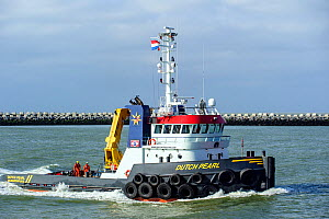 Pusher tug boat 'Dutch Pearl' on the North Sea, Netherlands, May 2013. - Philippe Clement