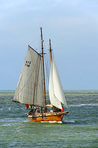 The Belgian two-masted schooner 'Rupel' during the maritime festival Oostende voor Anker / Ostend at Anchor 2013, Belgium, 25th May 2013. - Philippe Clement