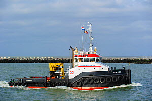 Tugboat 'Sea Alfa' entering port on the North Sea, the Netherlands, May 2013. - Philippe Clement