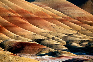 John Day Fossil Beds National Monument, Painted Hills Unit, Oregon, USA, May 2013.  -  Kirkendall-Spring