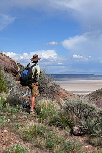 Man hiking on the Pike Creek Trail in the Steens Mountains Wilderness, Oregon, USA, May 2013. Model released.  -  Kirkendall-Spring