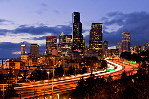 View of the Seattle skyline from the 12th Avenue South bridge, Washington, USA. March 2013. - Kirkendall-Spring