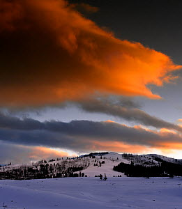 Sunset in the Lamar Valley of Yellowstone National Park, Wyoming, USA, February 2013. - Kirkendall-Spring