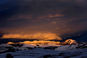 Sunset in the Lamar Valley of Yellowstone National Park, Wyoming, USA, June 2013. - Kirkendall-Spring
