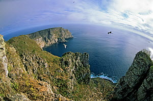 Wenman Island (Wolf Island) fish eye view from summit  of Outpost Island, remnant of volcanic caldera, hosting large colonies of Red-footed boobies and Greater frigatebirds, also home to Vampire finch...  -  Tui  De Roy