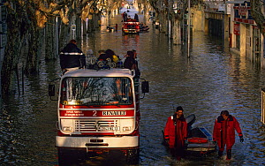 Rescue operation in Arles city flooded by the Rhone in December 2003. Camargue, France. - Jean E. Roche