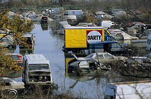 Flooded cars in scrapyard in Arles city flooded by the Rhone in December 2003. Camargue, France. - Jean E. Roche