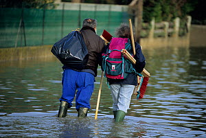Couple carrying brooms through flood waters, Arles, December 2003 floods, Camargue, France.  -  Jean E. Roche