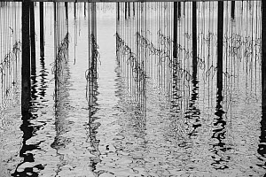Reflections in water at mussel farm in the bay of Fos-sur-Mer, Camargue, France, September.  -  Jean E. Roche
