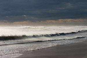 Stormy seas washing on the shore of Camargue, France, October 2012.  -  Jean E. Roche