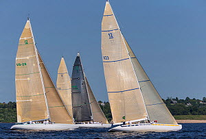 'Courageous', 'Victory 83' and 'Intrepid' at the start of the New York Yacht Club Annual Regatta, New York, USA, June 2013. All non-editorial uses must be cleared individually.  -  Onne  van der Wal